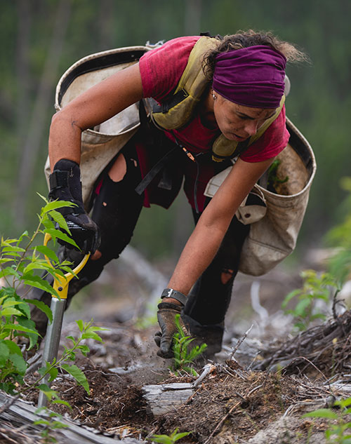 Woman planting a tree from One Tree Planted